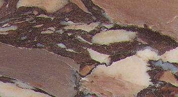 Breccia Medicea di Siena Marble