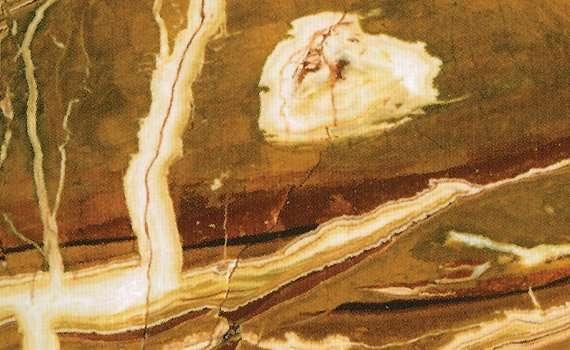 Diaspro Giallo Marble