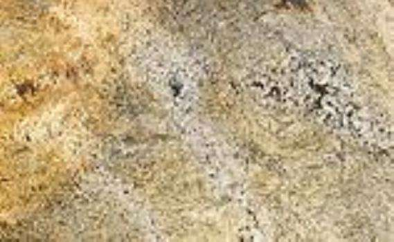 Dark Golden Beach Granite