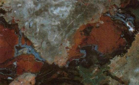 Gris Antique Marble