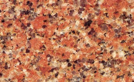 Rosa Elhody Dark Granite