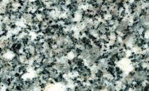 Seal Flower Granite