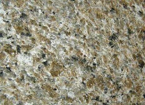 Caramelo Ornamental Granite
