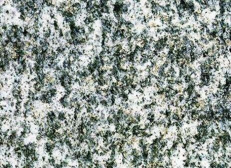 Beola Argentata Granite