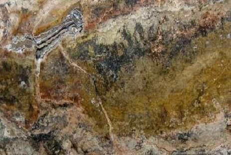 Travertino Multicolor Marble
