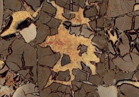 Septaria Precioustone