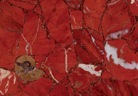Red Jasper Africano Precioustone