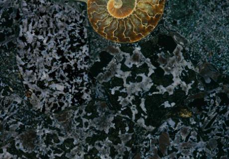 Purple Labradorite Precioustone