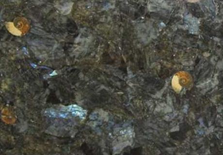 Labradorite con Fossile Precioustone