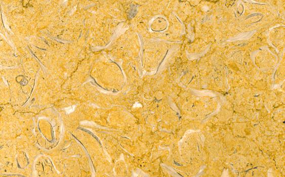 Giallo Perly Marble